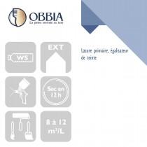 Pictogrammes de mise en oeuvre et certification(s) pour le Lasure primaire égalisateur de teinte Obbia